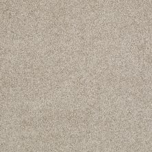 Anderson Tuftex American Home Fashions Belmont Travertine 00163_ZZA14