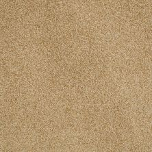 Anderson Tuftex American Home Fashions Belmont Gold Dust 00225_ZZA14