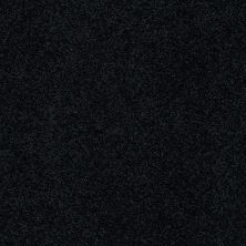 Anderson Tuftex American Home Fashions Belmont Spruce 00349_ZZA14