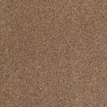 Anderson Tuftex American Home Fashions Belmont Indian Spice 00654_ZZA14