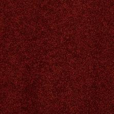 Anderson Tuftex American Home Fashions Belmont Cranberry 00665_ZZA14