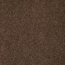 Anderson Tuftex American Home Fashions Belmont Truffle 00738_ZZA14