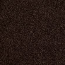 Anderson Tuftex American Home Fashions Belmont Chocolate Drop 00777_ZZA14