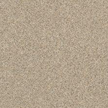Anderson Tuftex American Home Fashions Hollister Sand Dune 00223_ZZA15