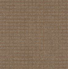 Anderson Tuftex American Home Fashions Urban Alley Mushroom 00257_ZZA23