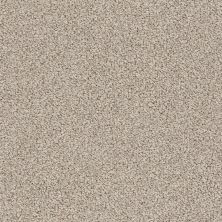 Anderson Tuftex American Home Fashions Empress Stucco Tan 00175_ZZA37