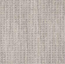 Anderson Tuftex American Home Fashions Palo Alto Gray Frost 00514_ZZA38