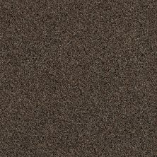 Anderson Tuftex American Home Fashions Ballroom Brown Sugar 00155_ZZA41