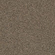 Anderson Tuftex American Home Fashions World Class Tumbleweed 00255_ZZA42