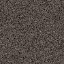 Anderson Tuftex Builder Studio Tap Porpoise 00556_ZZB41