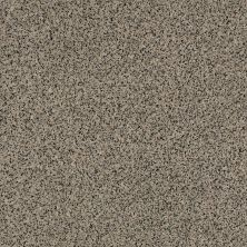 Anderson Tuftex Builder Chorus Line Sandshell 00171_ZZB42