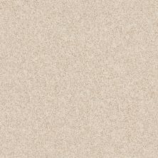 Anderson Tuftex Builder Stylish One Windswept 00222_ZZB61