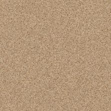 Anderson Tuftex Builder Stylish One Tawny Bisque 00225_ZZB61