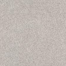 Anderson Tuftex Builder Stylish One Platinum 00552_ZZB61