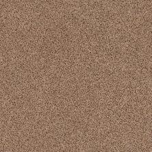 Anderson Tuftex Builder Stylish One Desert View 00665_ZZB61