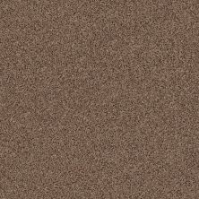 Anderson Tuftex Builder Stylish One Mystic Brown 00775_ZZB61