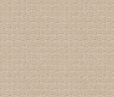 Anderson Tuftex Builder Merle Toffee Cream 00183_ZZB81