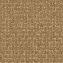 Anderson Tuftex Builder Merle Golden Straw 00224_ZZB81