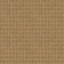 Anderson Tuftex Builder Merle Golden Straw 00224_ZZB81