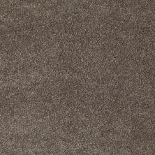 Anderson Tuftex AHF Builder Select Darling I Koala 00574_ZZL03