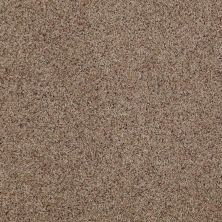 Anderson Tuftex AHF Builder Select Darling II Cinnamon Toast 0722B_ZZL05