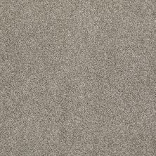 Anderson Tuftex AHF Builder Select Get Inspired Demure Taupe 00573_ZZL14
