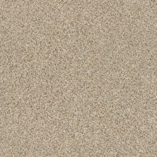 Anderson Tuftex AHF Builder Select Smart Troy Sand Dune 00223_ZZL16