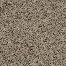 Anderson Tuftex AHF Builder Select Waltzing Toasty 00253_ZZL41