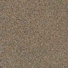 Anderson Tuftex AHF Builder Select Waltzing Cork 00254_ZZL41