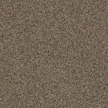 Anderson Tuftex AHF Builder Select Waltzing Tumbleweed 00255_ZZL41