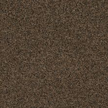 Anderson Tuftex AHF Builder Select Waltzing Coconut Husk 00775_ZZL41
