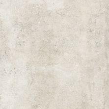 Casa Roma ® Castlestone White (12″x24″) CAS00136