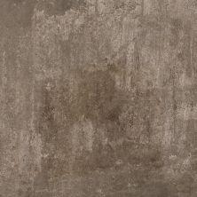 Casa Roma ® Castlestone Musk (12″x24″) CAS00139