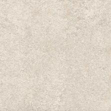 Casa Roma ® Freedom White (12×24 Rectified) CAS02162