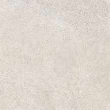 Casa Roma ® Duke Tortora (12×24 Pressed) CAS4201558
