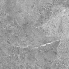 Casa Roma ® Sorrento Carbon (10×20 Glossy Wall Tile) CAS56506