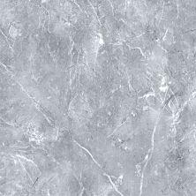 Casa Roma ® Absolute Marble Savioe Grey (12″x24″ Pressed) CASMA260136