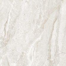 Casa Roma ® Marble Life Travertine Grey (12×24 Polished, Rectified) CASMA805P36