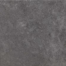 Casa Roma ® Ecoproject Smoke (12×24 Rectified) CASPF00012820