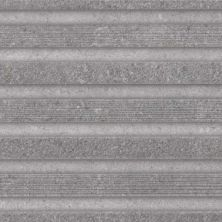 Casa Roma ® Ecoproject Grey/Silver (8×24 Muretto Rectified) CASPF00013056