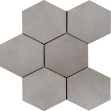 Casa Roma ® Cassini Polvere (8″x7″ Hexagon Decor) CASR4CN