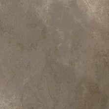 Casa Roma ® Trex3 Dove Grey (24″x24″ Rectified Matte) CASTREX60TORM