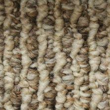 Richmond Carpet Aspect III A/B & K/B Creek Trail RIC1218ASPEJ