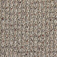 Richmond Carpet Cashmere Stylish Chic RIC2901CASH