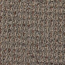 Richmond Carpet Cashmere Runway Style RIC2903CASH