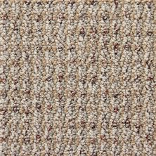 Richmond Carpet Cashmere Fashion Neutral RIC2905CASH