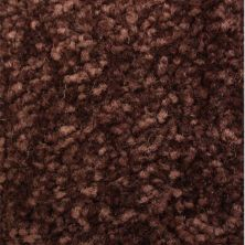 Richmond Carpet Satin Supreme Eggplant RIC3163SASU