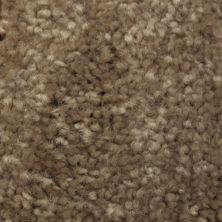 Richmond Carpet Satin Classic Moccasin RIC3174SACL