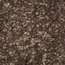 Richmond Carpet Regal Supreme Tamarind RIC3175RESU