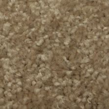 Richmond Carpet Regal Classic Barn Wood RIC3177RECL